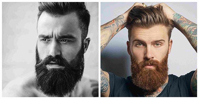 barba bandholz