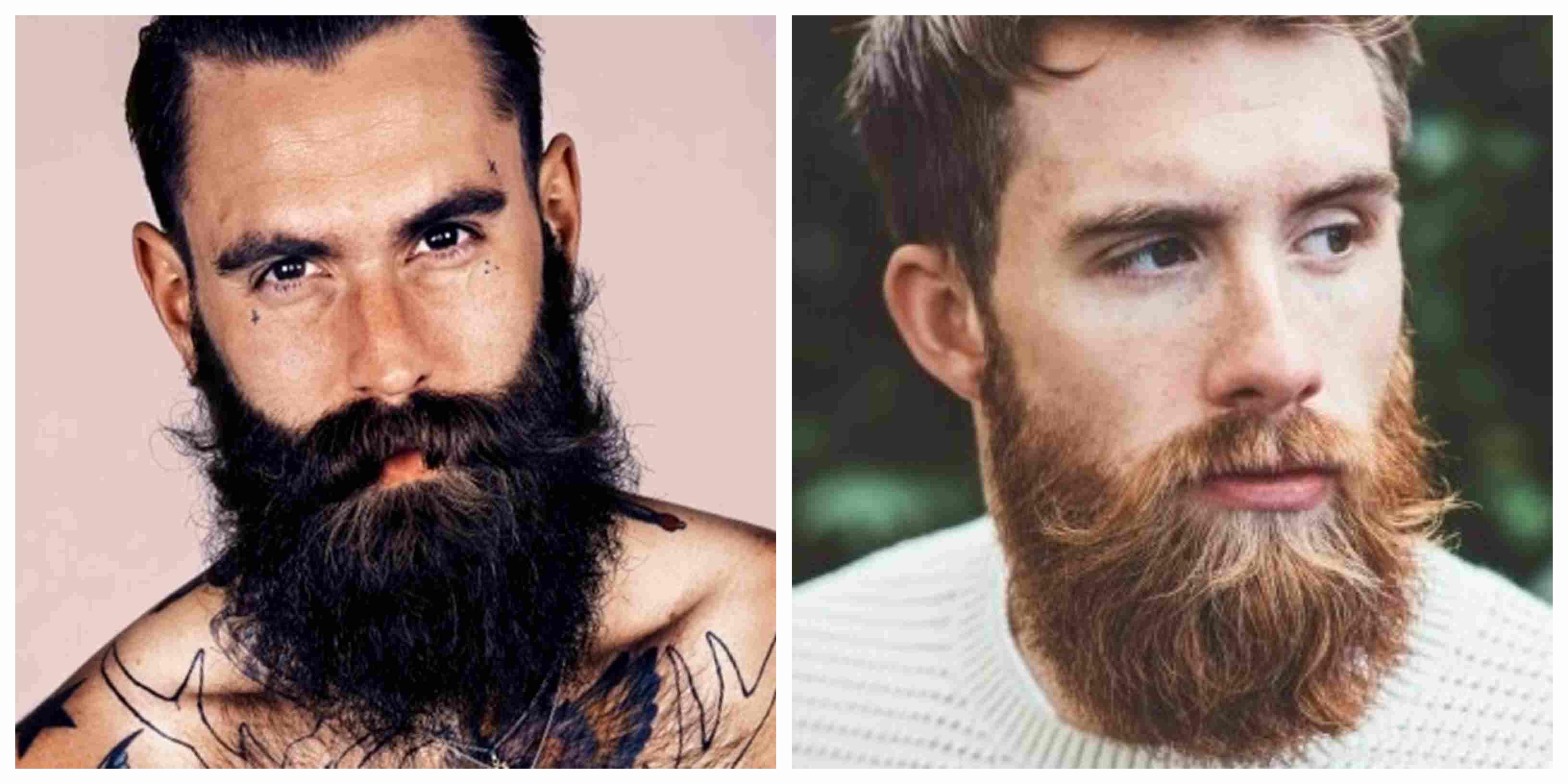 barba garibaldi